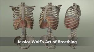 rib animation